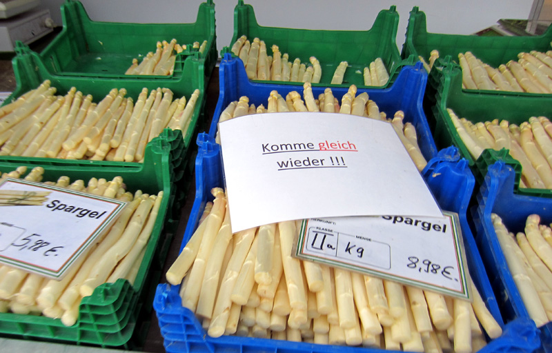 spargel16stand