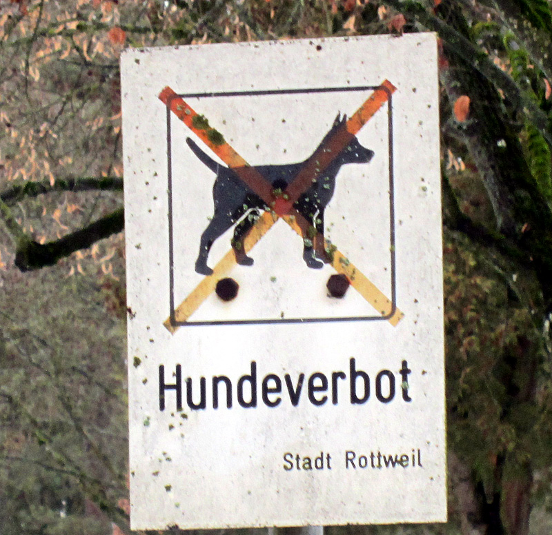 rottweilhundeverbot